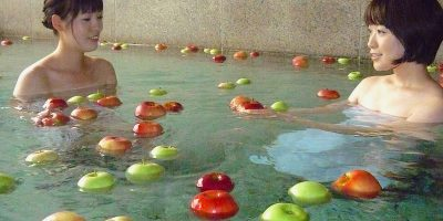 茨城県大子町、大子温泉「やみぞ」、袋田温泉「思い出浪漫館」の「奥久慈しゃも」