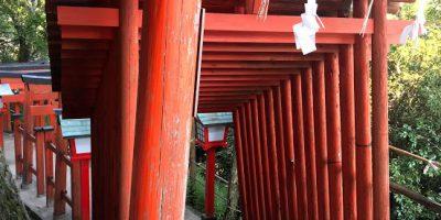 ご縁の国しまね 太皷谷稲成神社名物千本鳥居の実数は123本